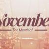 November Offers
